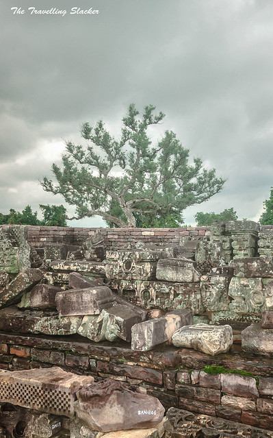 Sanchi Stupa (13)