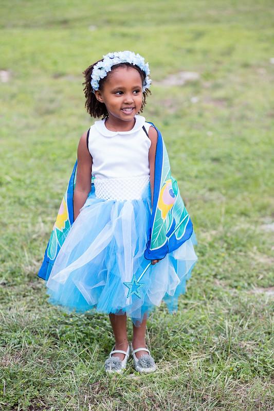 a hanimi fairy