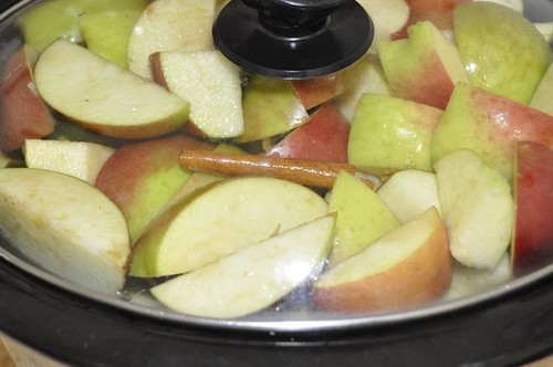 apple sauce in the slow cooker 11