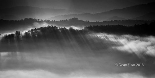 morning autumn light shadow sky panorama sunlight white mist mountain black tree monochrome horizontal misty fog contrast forest sunrise landscape dawn nationalpark scenery day darkness outdoor tennessee hill foggy peaceful peak scene valley flare mysterious smokies tranquil touristic pineforest foothillsparkway greatsmokymountainsnationalpark