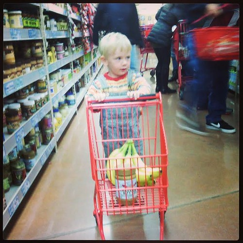 ollie shopping cart