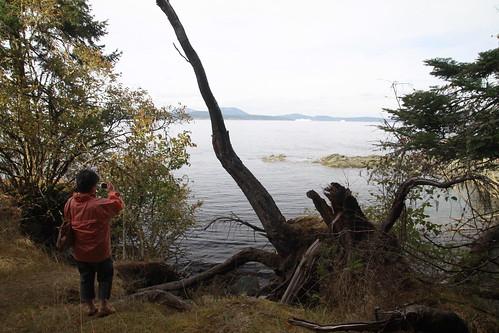 Beaver Point Warf