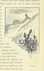 Image taken from page 68 of '[In the Trades, the Tropics, & the Roaring Forties ... With 292 illustrations ... after drawings by R. T. Pritchett.]'