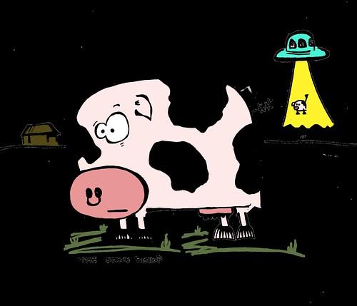 Anxious Cow