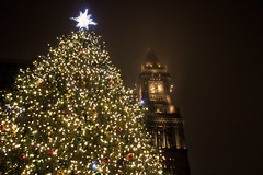 Quincy Market Tree and Tower