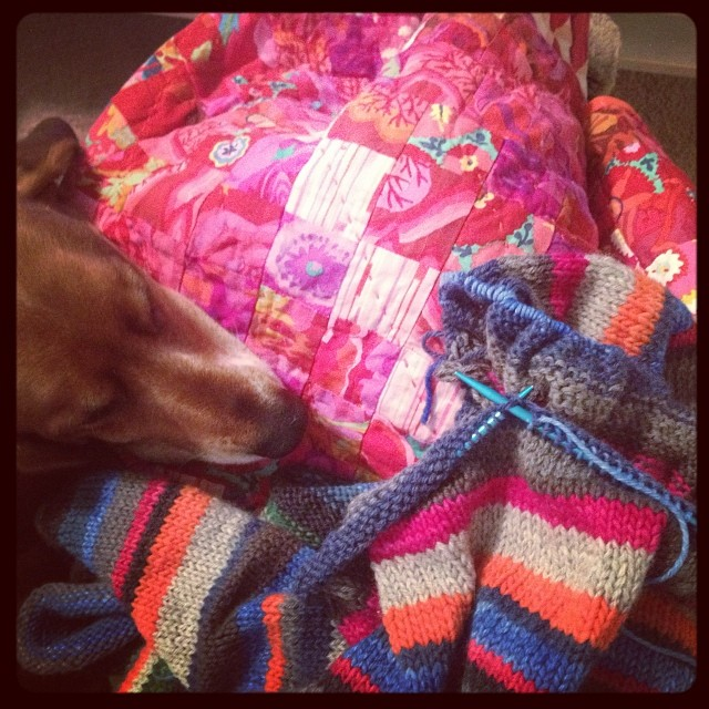 This weather has me longing to finish a sweater! #yearofmaking 7/365  (#staccatokal under my #scrappytrip quilt, with Beau)
