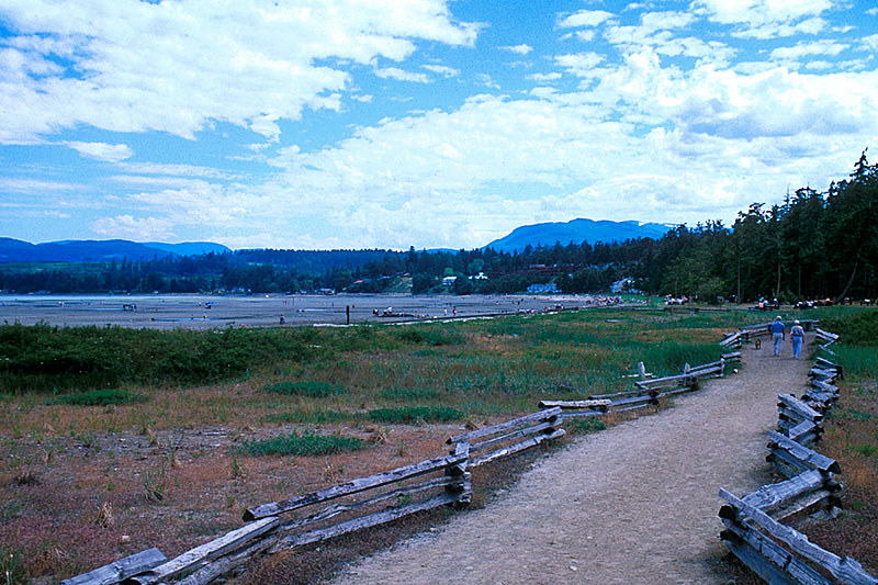 Rathtrevor Beach Provincial Park, Parksville, Vancouver Island, British Columbia, Canada