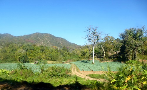 TH-Chiang Dao-Fang-Route (44)