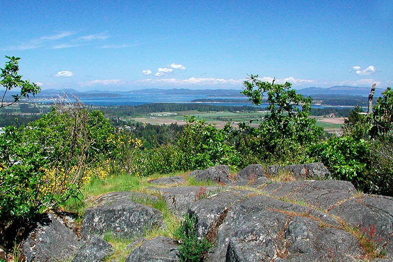 View to the East from Bear Hill Park, Saanich, Victoria, Vancouver Island, British Columbia, Canada