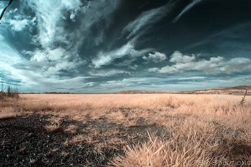 clouds ir sonoma pentaxk100ds rokinon8 sif14