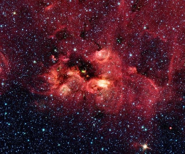 Coyote Head Nebula