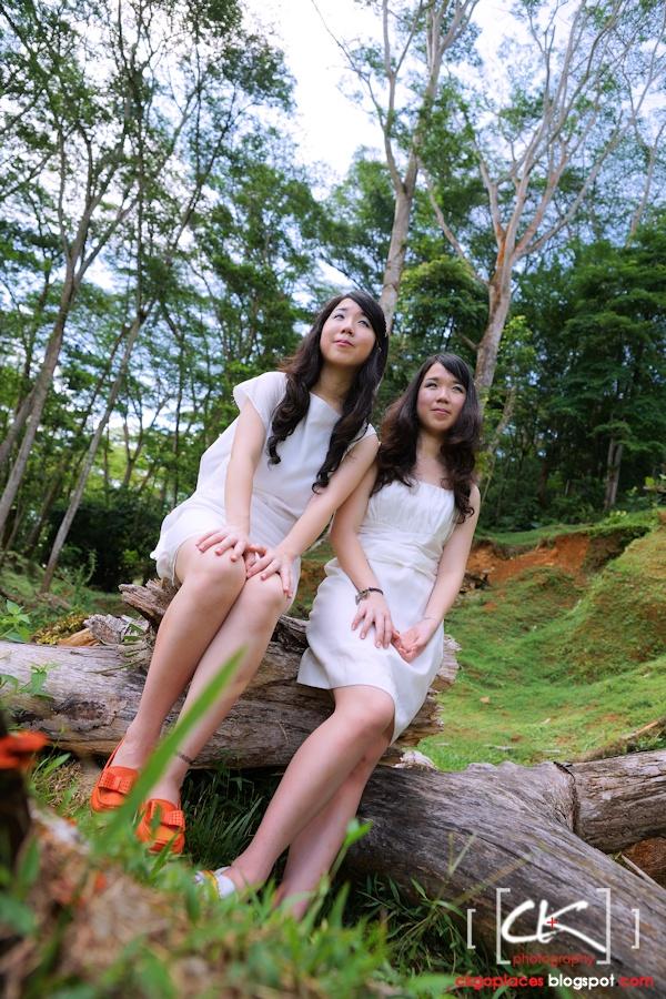 Twins_12s