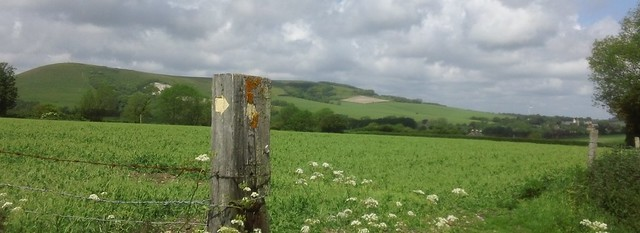 Looking back to Caburn Fort from near Preston Court