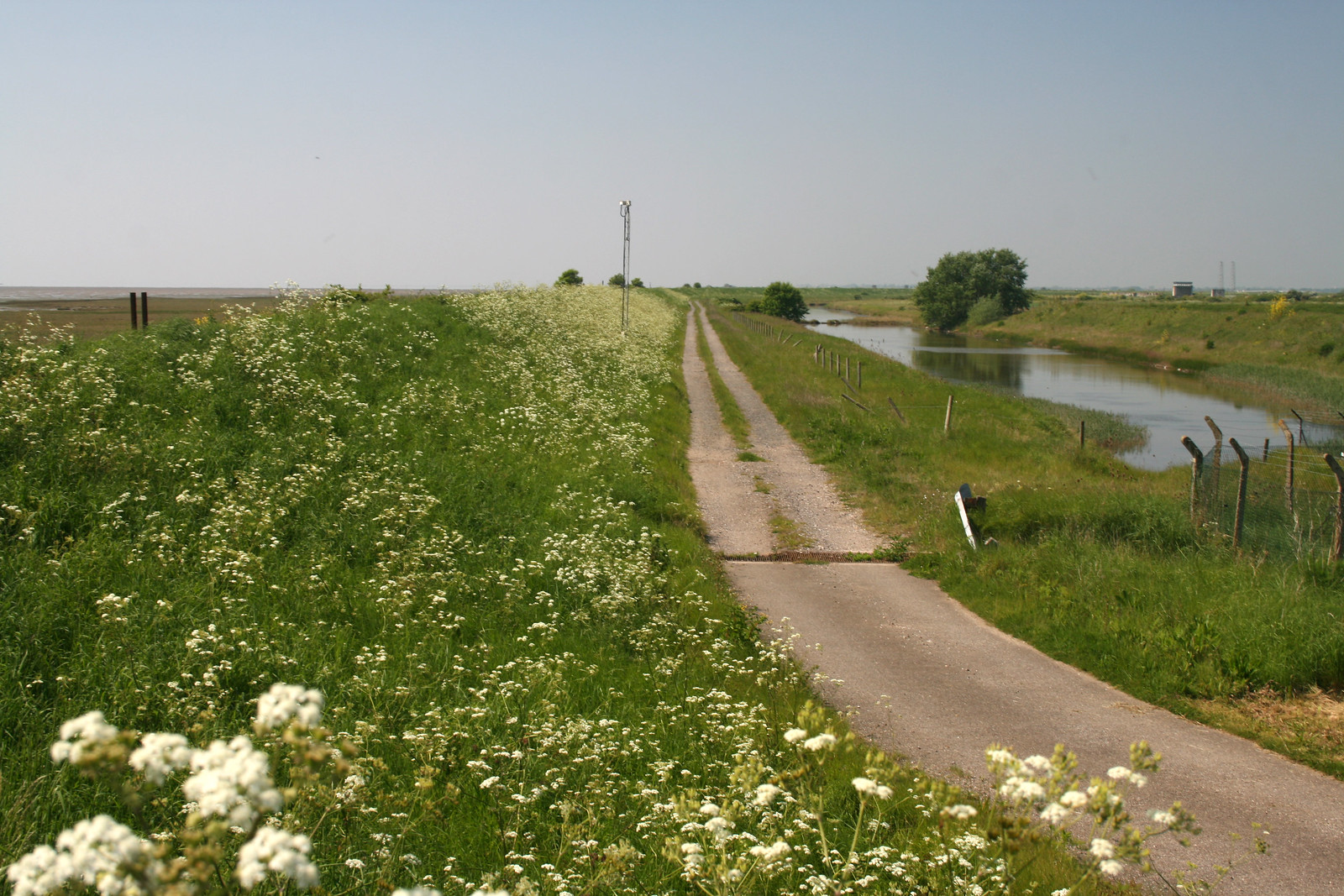 Path to Shelford Head on Foulness Island