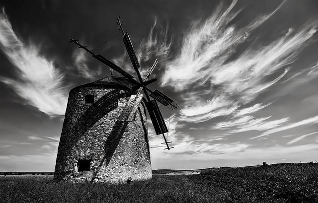 Szélmalom Tés - Windmill Tés