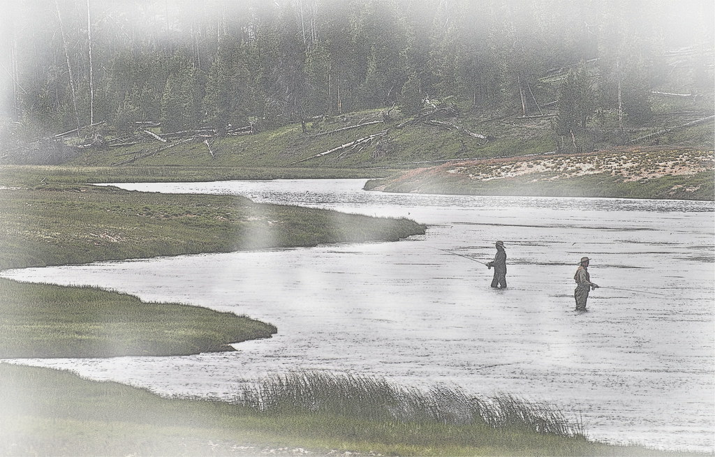 Fly fishing in yellowstone national park foggy fishing for Yellowstone national park fishing