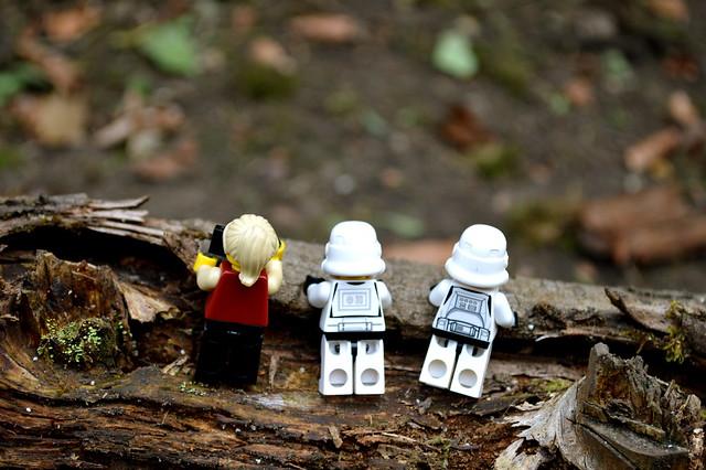 Desolation of the log