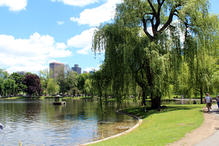 The Stylum Boston Park