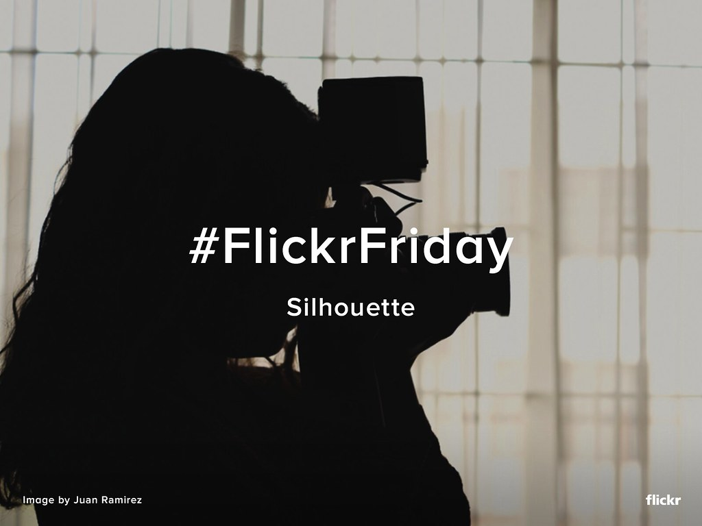 Flickr Friday - Silhouette