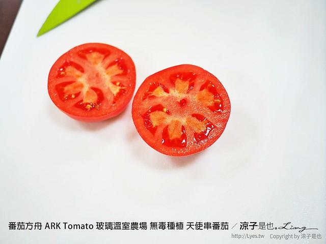 番茄方舟 ARK Tomato 玻璃溫室農場 無毒種植 天使串番茄 88