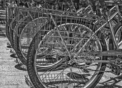 Wheels for Share