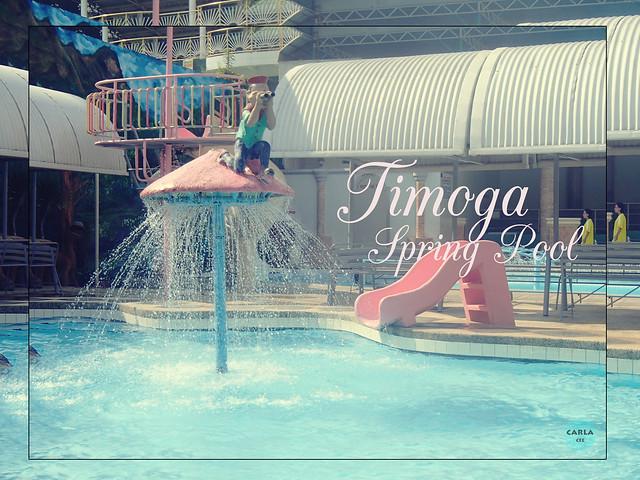 Timoga Spring Pool