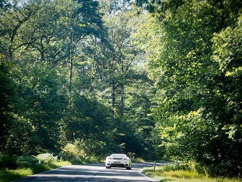 森の中を行くフェラーリ
