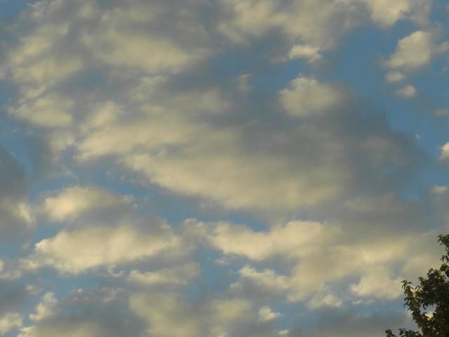 skywatchDSCN2355