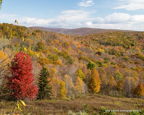 statepark mountains fall virginia unitedstates blueridgemountains graysonhighlands appalachaintrail mouthofwilson vastateparks