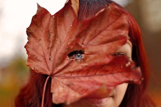 eye of the leaf