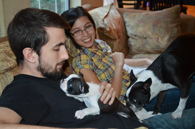 A young man with a woman on a couch holding a Boston Terrier puppy.