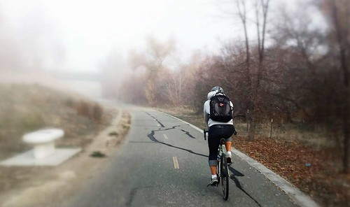 Foggy on the Guadalupe River Trail this morning