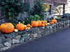 knowtheself posted a photo:	winter pumpkins