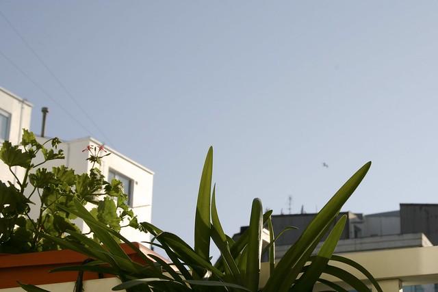 plantas_5_20130708 - Version 2