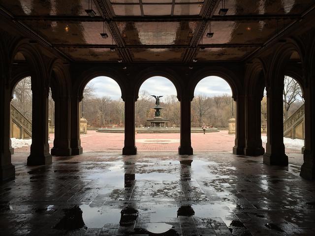 2014.01.12 - Bethesda Fountain