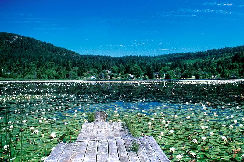 Cranberry Lake, Powell River, Malaspina Peninsula, Sunshine Coast, British Columbia, Canada