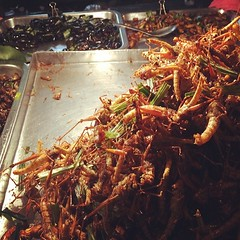 Grilled insects anyone?  Bangkok, Thailand