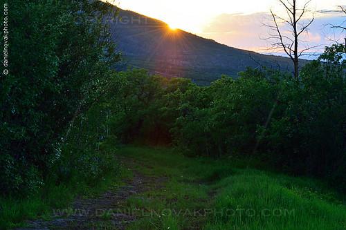 sunset sun mountain green nature outdoors woods colorado unitedstates tracks resort trail co mesa powderhorn