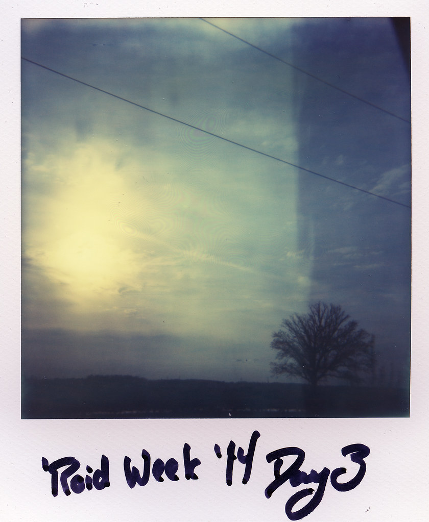 'Roid Week '14 - Day Three