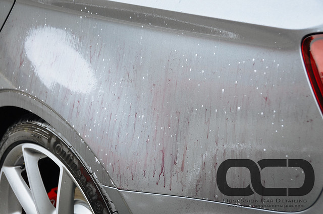 Audi S3-19.jpg