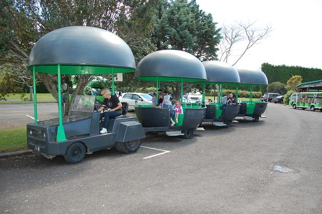 Kiwi Tren