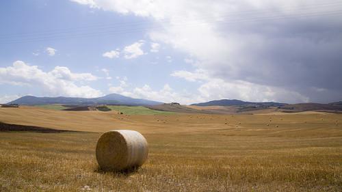 italy tuscany fields valdorcia balladifieno