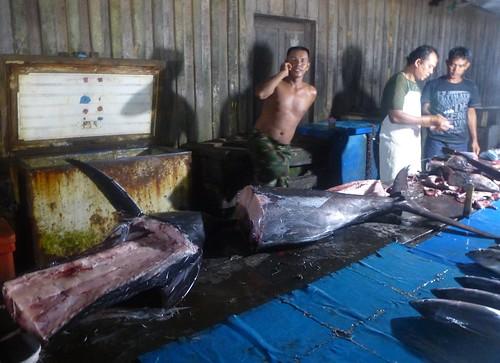 Papua13-Sorong-marche de nuit (27)