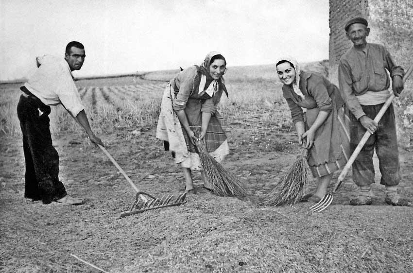 Barriendo el cereal antes de limpiarlo. 1955