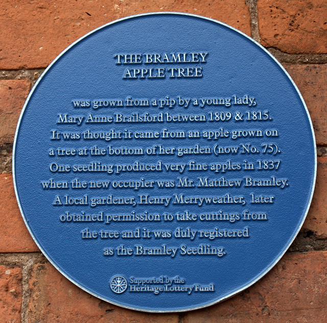 Photo of Mary Anne Brailsford, Henry Merryweather, and Bramley Apple Tree blue plaque