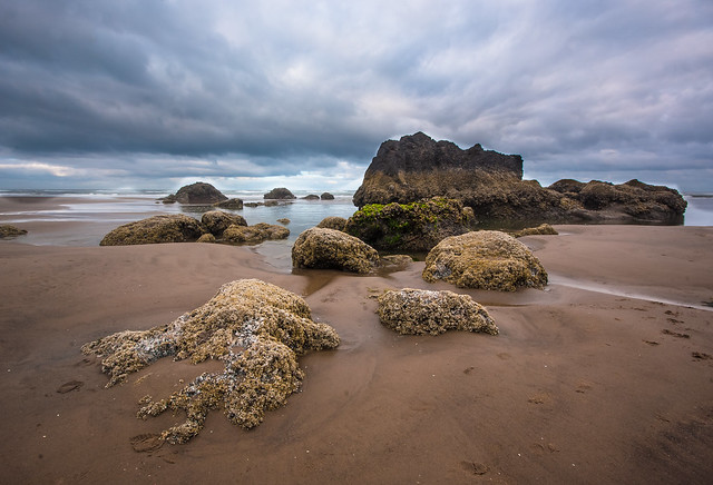 Cannon Beach Landscape