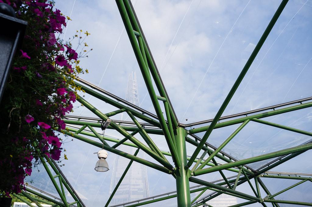 Canopy & Shard