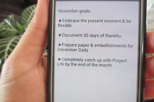 november goals: 2013