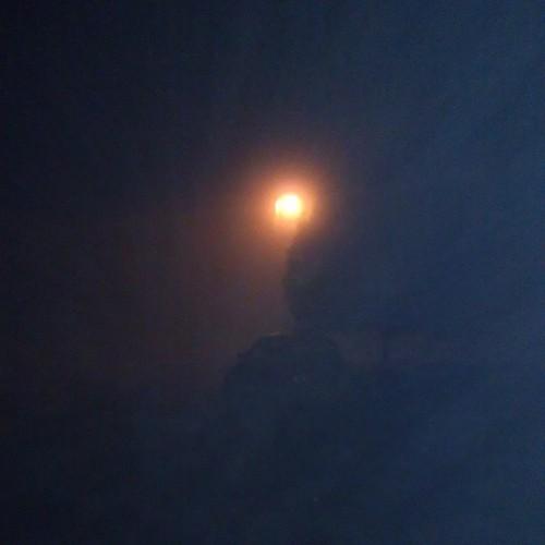 Love foggy nights!  #rockvale #foggy #grandpa's #canyouseethetree