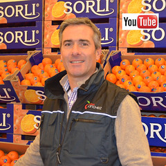 Frutas Sanchez